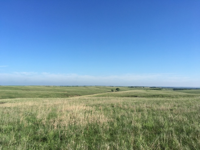 Willa Cather Memorial Prairie #3